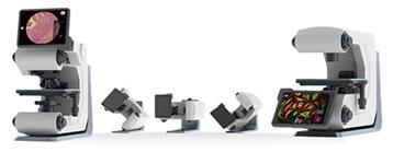 荧光显微镜